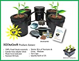 Hydroponic Recirculating Deep Water Culture System with Root Spa. (4) 5 Gallon Buckets + 1 Control For Sale