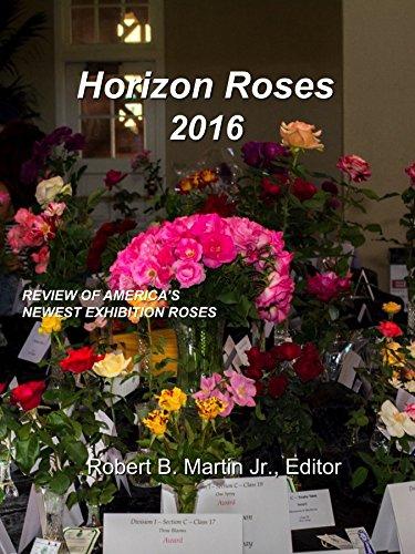 Horizon Roses 2016 - Horizon Hybrid Shopping Results