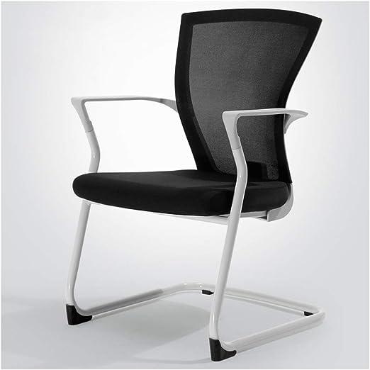 SPAQG Silla de Trabajo, cojín, Soporte Lumbar, sillas cómodas ...