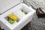 JOEE Small Cooler Organizer (Small) 11' Wide- The World's Best Cooler Accessory with 5 Amazing Features Order Now