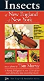 Insects of New England & New York, Tom Murray, 1936571021