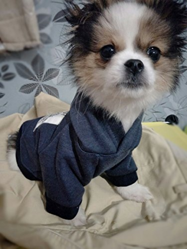 DroolingDog Dog Hoodie Pet Dog Coat Warm Sweatshirt Puppy Clothes for Small Dogs Boy Dog T Shirt, Small, Blue by DroolingDog (Image #2)