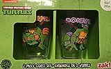 Zak Designs TNTN-R190 Turtles Retro Glass Tumbler 2 Piece Gift...