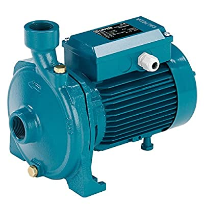 Calpeda NM1S 05C16S End Suction Centrifugal Pump 1 Phase 0.5HP 230V - NMM 1/S-60 230V