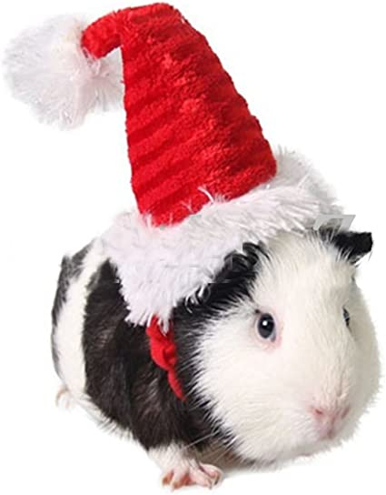 Guinea Pig Small Pet Sombrero Holiday Halloween Costume Clothes Cute Funny Gift