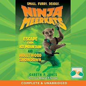 Ninja Meerkats Audiobook
