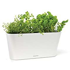 Aquaphoric Herb Garden Tub