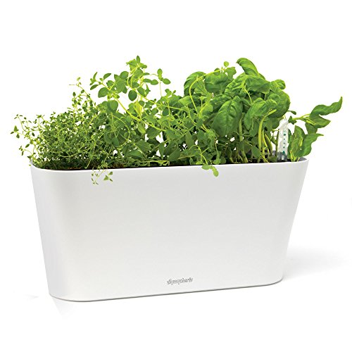 Aquaphoric Herb Garden Tub - Self Watering Passive Hydroponic Planter + Fiber Soil, Keeps Indoor Kitchen Herbs Fresh and Growing for Weeks on Your Home Windowsill. Compact, Attractive and Foolproof. - Windowsill Herb