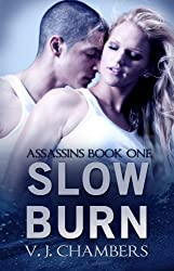 Slow Burn (Asassins Book 1)