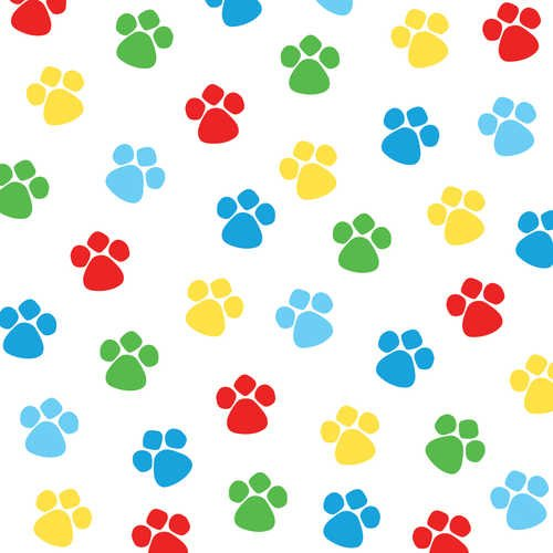 Creative Converting Paw Ty Time Birthday Beverage Napkins, 18 Count:  Amazon.co.uk: Kitchen U0026 Home