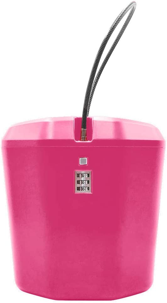 Secure Your Valuables Cash Jewelry Storage Car Safe Portable Beach Safe Box Lock Box Password Boxs