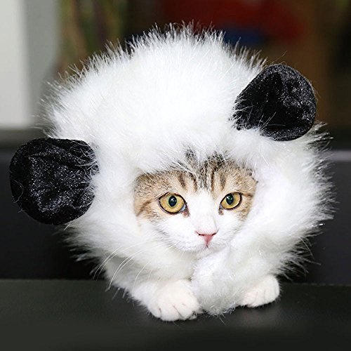 Pesp Puppy Cat Dog Costume Cosplay Lion Panda Wig Dress up with Ears Hats for Halloween Christmas Festival Party Fancy Dress Pet Clothes (White)