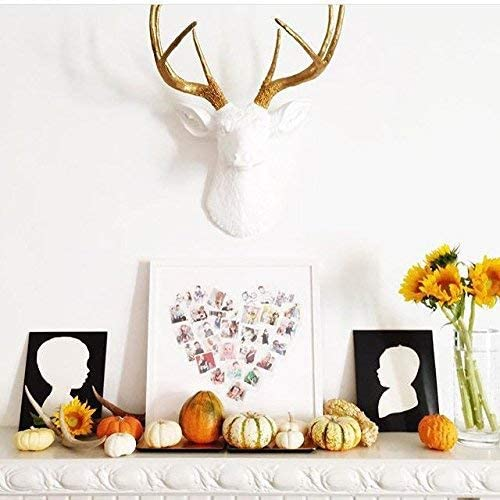 Near and Deer 8 Point Faux Deer Head Wall Mount – Farmhouse Chic Home Office D cor – White Gold