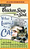 img - for Chicken Soup for the Soul: What I Learned from the Cat: 101 Stories about Life, Love, and Lessons book / textbook / text book