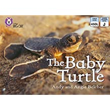 Collins Big Cat – The Baby Turtle: Band 03/Yellow