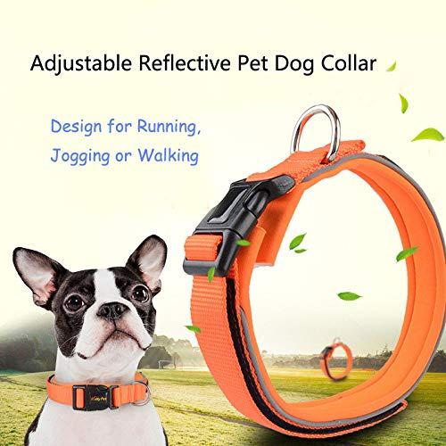 Black For 1 Dog PetAZ Adjustable Reflective Pet Dog Collar with Durable Buckle Clip and Comfort Nylon Weave Design for Running, Jogging or Walking