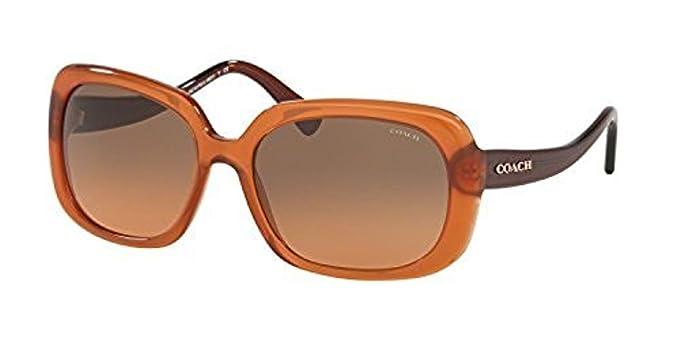 822e8cd4e46e6 ... italy coach hc 8178 sunglasses 540295 amber dark brown 57 17 140 0fab1  737ea