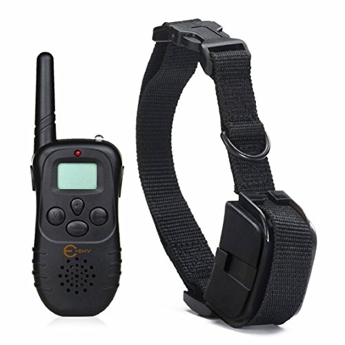 Esky Rechargeable Display Remote Training