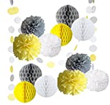 14PCS Yellow Gray White Decorative Party Paper Pack Pompoms Flower Honeycomb Ball Circle Paper Garland Baby Shower Wedding Birthday Decoratio Favour