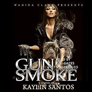 Gun Smoke Audiobook