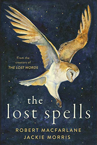 Book Cover: The Lost Spells
