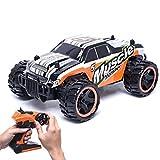 83599 2.4G High Speed Monster Truck Remote Control Car (Orange)