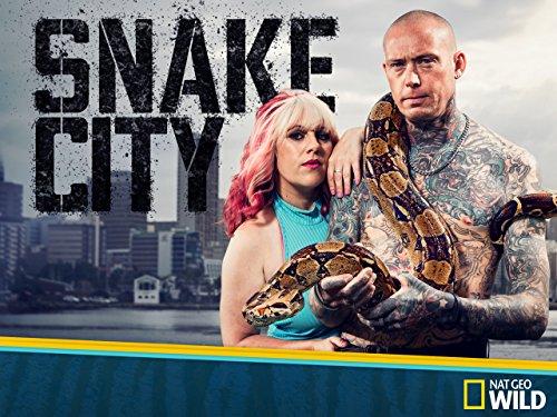 amazon com  snake city season 2  amazon digital services llc