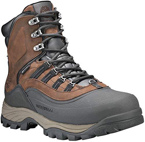 Timberland Chocorua Trail Shell Toe Winter Boot - Men's Dark Brown Full-Grain, 10.5 ()