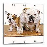 british clock - 3dRose dpp_8578_2 British Bulldog Male-Wall Clock, 13 by 13-Inch