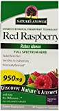 Nature's Answer Red Raspberry Leaf Vegetarian Capsules, 90-Count Review