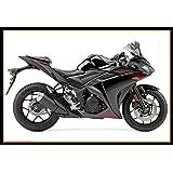 Amazon.com: (2012 +) Kawasaki Ninja 300 EX300 Z250 Carbon ...
