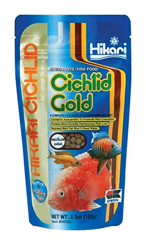 Hikari 3.5-Ounce Sinking Cichlid Gold Pellets for Pets, Medium