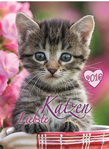 Bild-Kalender Liebste Katzen 2016 Tierkalender