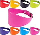 """CollarDirect Whippet Dog Collar Greyhound Lurcher Borzoi Soft Leather Padded XS S M L Pink Black Purple Red Yellow Blue Orange Lime (Lime Green, Neck fit 9"""" - 11"""")"""