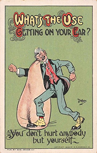 Greetings What's the Use…quot; Comic Dwig Artist Signed Antique Postcard J64029