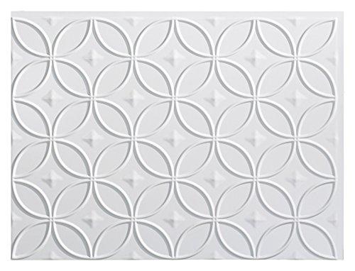 Tin Backsplash - Fasade Easy Installation Rings Gloss White Backsplash Panel for Kitchen and Bathrooms (18