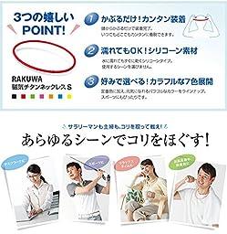 Phiten Rakuwa Magnetic Titanium Necklace S Made in JAPAN [Japan Import] (21.7\