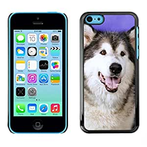 All Phone Most Case / Hard PC Metal piece Shell Slim Cover Protective Case for Apple Iphone 5C Husky Siberian Wolf Dog Canine