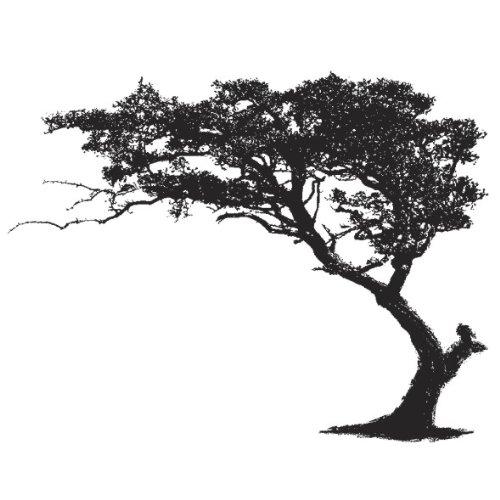 Xxl Xxxl Wandtattoo Mega Wand Aufkleber Der Baum In Der Savanne