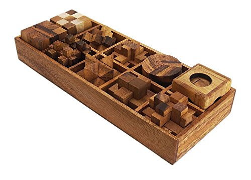 Handmade Ten Brain Teasers with the Puzzle Showcase, 10 Wooden Game Gift Set, Wooden Puzzles For Adults.