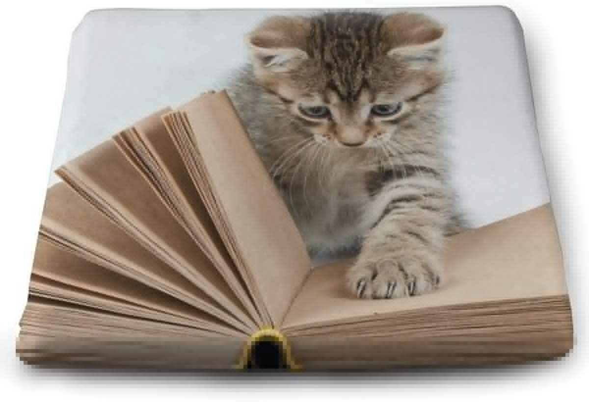 ADGoods Cojín de Asiento Cuadrado Square Seat Cushions Cat Kitten Reading Premium Comfort Memory Foam Chair Pads For Office,Kitchen,Travel,Car