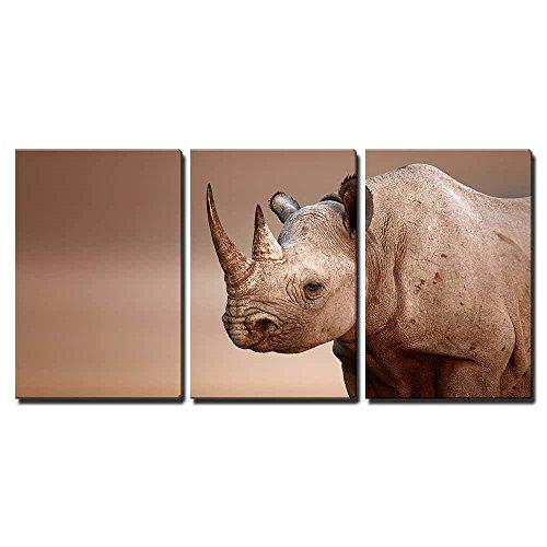 Black Rhinoceros Portrait Diceros Bicornis Salt Pans of Etosha National Park Namibia x3 Panels