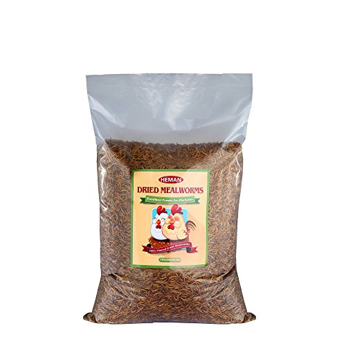 44 LB Bulk Dried Mealworms Bulk for Birds Chicken Treats(411LBS) by Gardenpt