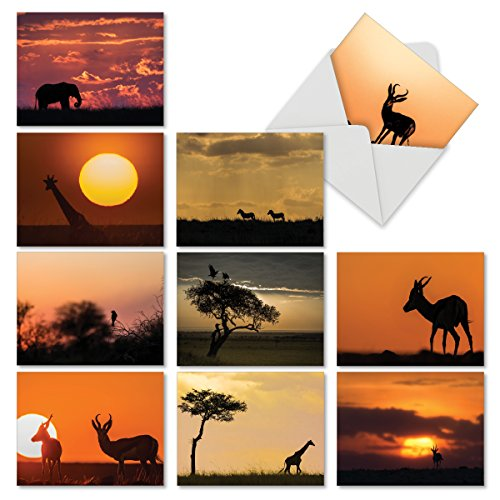 - 10 All-Occasion Note Cards with Envelopes 4 x 5.12 inch, Assorted 'Safari Sunsets' Stationery Featuring Stunning African Sunsets, Blank Greeting Cards for Weddings, Birthdays, Thank You M6551OCB
