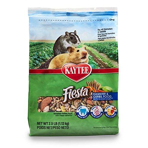 hamster free por