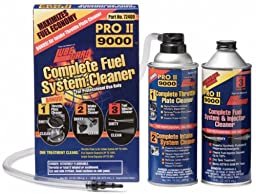 Lubegard Complete Fuel System Cleaner