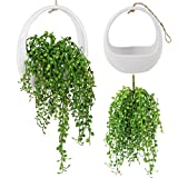 Greatflower 1 pc Artificial Succulents Lover's Tear with white hanging pot,Green