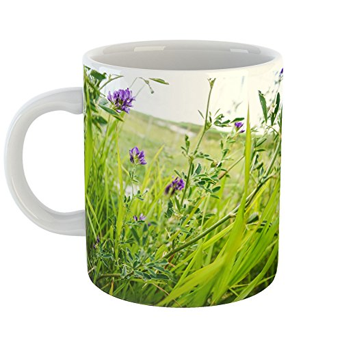 Westlake Art - Plant Grass - 11oz Coffee Cup Mug - Modern Picture Photography Artwork Home Office Birthday Gift - 11 Ounce (5357-CC5D6)