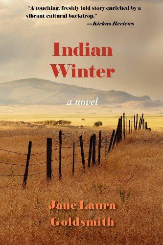 Indian Winter: A Novel