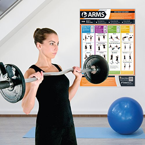 Gym Posters - Set of 13 (Large 33 5